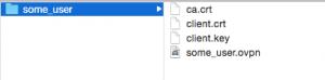 OpenVPN client configuration folder